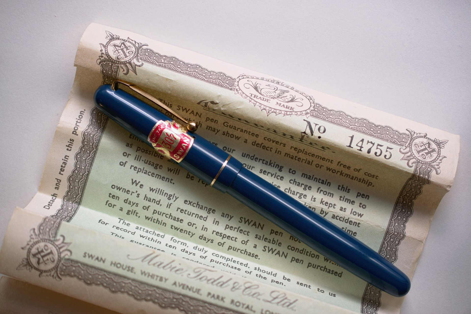 nib close-up